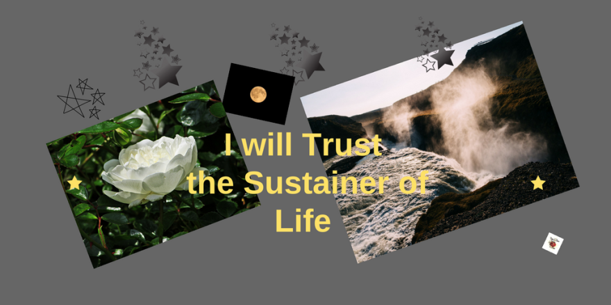I will trust the Sustainer ofLife
